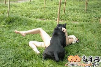 , 女人 与狗配交感觉怎样