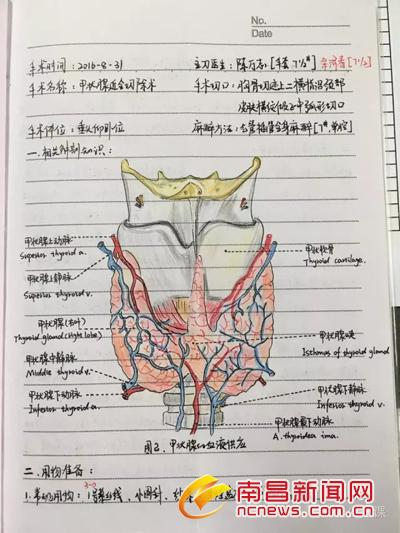 90后女护士手绘解剖图笔记曝光 手绘解剖图美女护士是哪家医院的