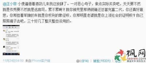 王思聪骂汪小菲为什么吵架骂战恩怨,王思聪汪小菲身价多少谁有钱