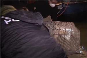 浙江铁笼沉尸案现场打捞视频真实照片全集图,胡方权什么资料背景