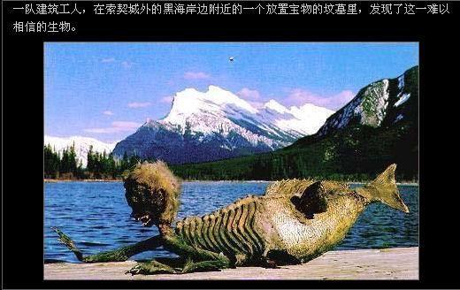 美人鱼真的存在吗照片视频 世界上到底有没有美人鱼真相揭秘