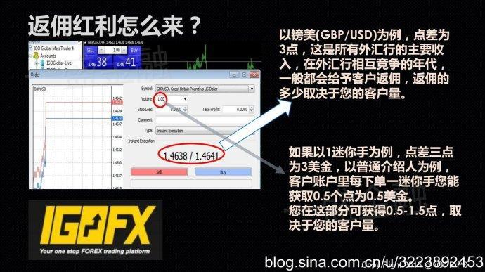 大马夫妇诈骗组织IGOFX怎么洗脑的?张雪娇夫妇资料背景抓到了吗?