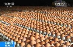 毒鸡蛋图片如何辨别吃了有什么反应会死亡吗?中国有没有毒鸡蛋?