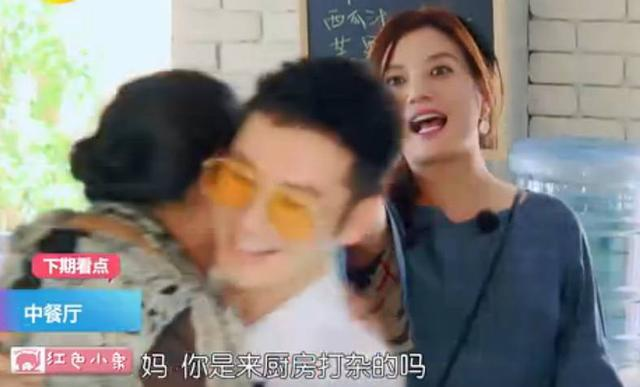 中餐厅赵薇妈妈崔老师是谁竟那么牛!崔新琴个人资料明星学生有谁
