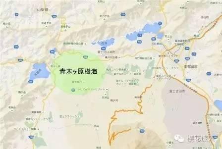 日本青木原树海尸骨图片进来就走不出去了,亲身经历灵异事件知乎